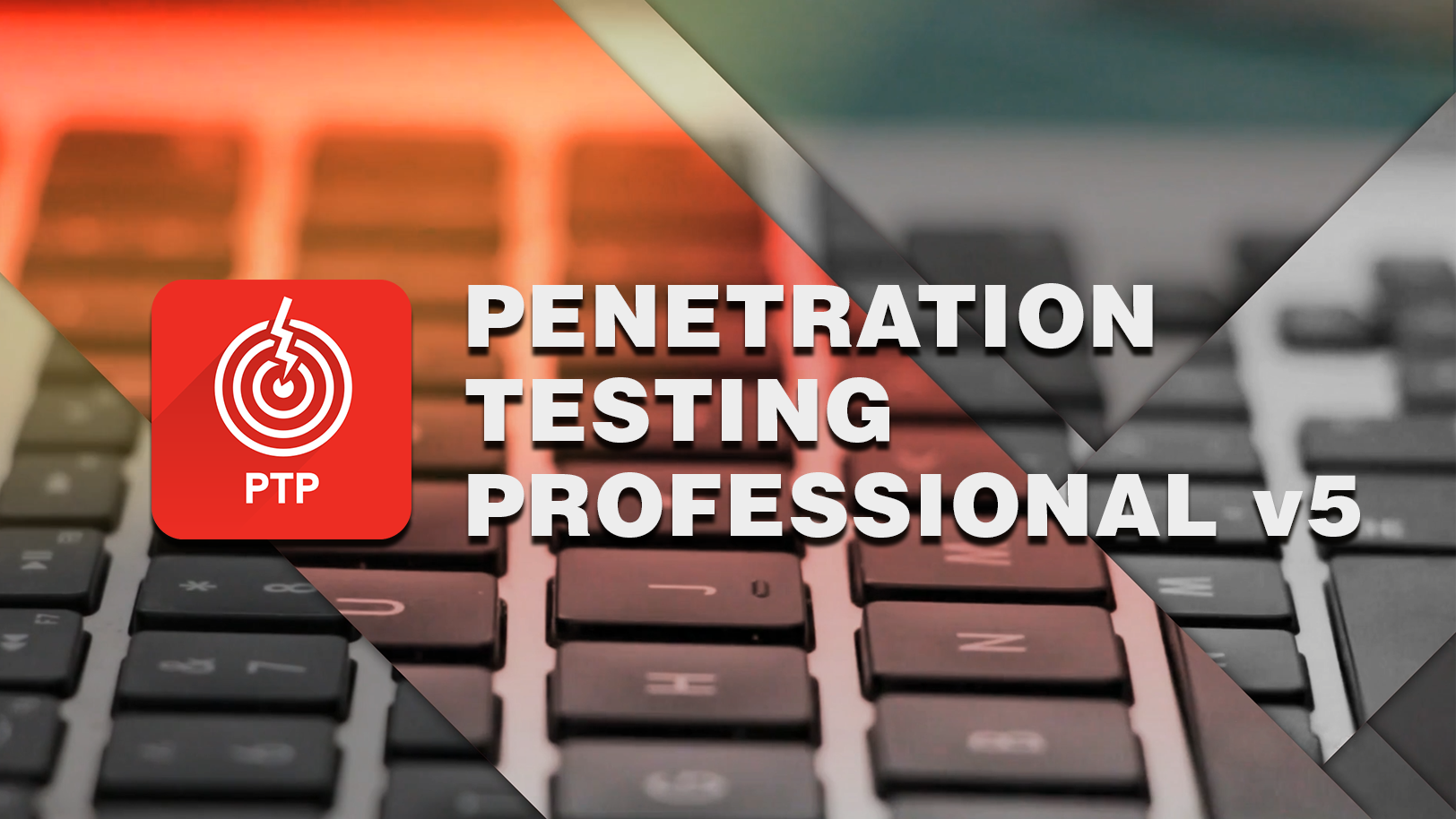 Penetration Testing Professional Training Course - PTP